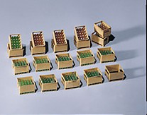 Pola 331877  Beer Crates (15 with Bottles) (20)